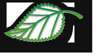 Nokian Green